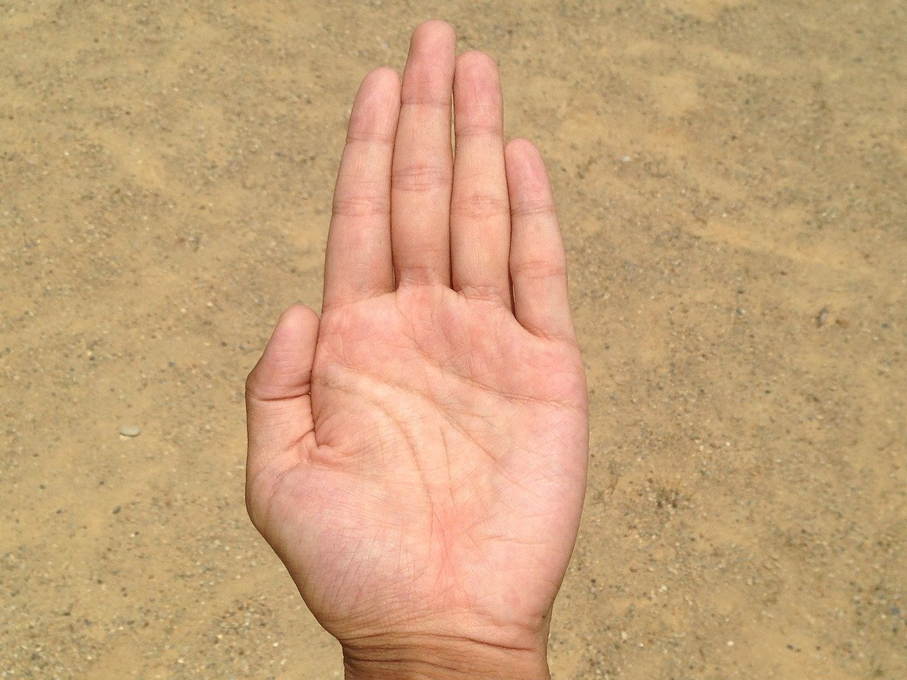 女性の手のひら